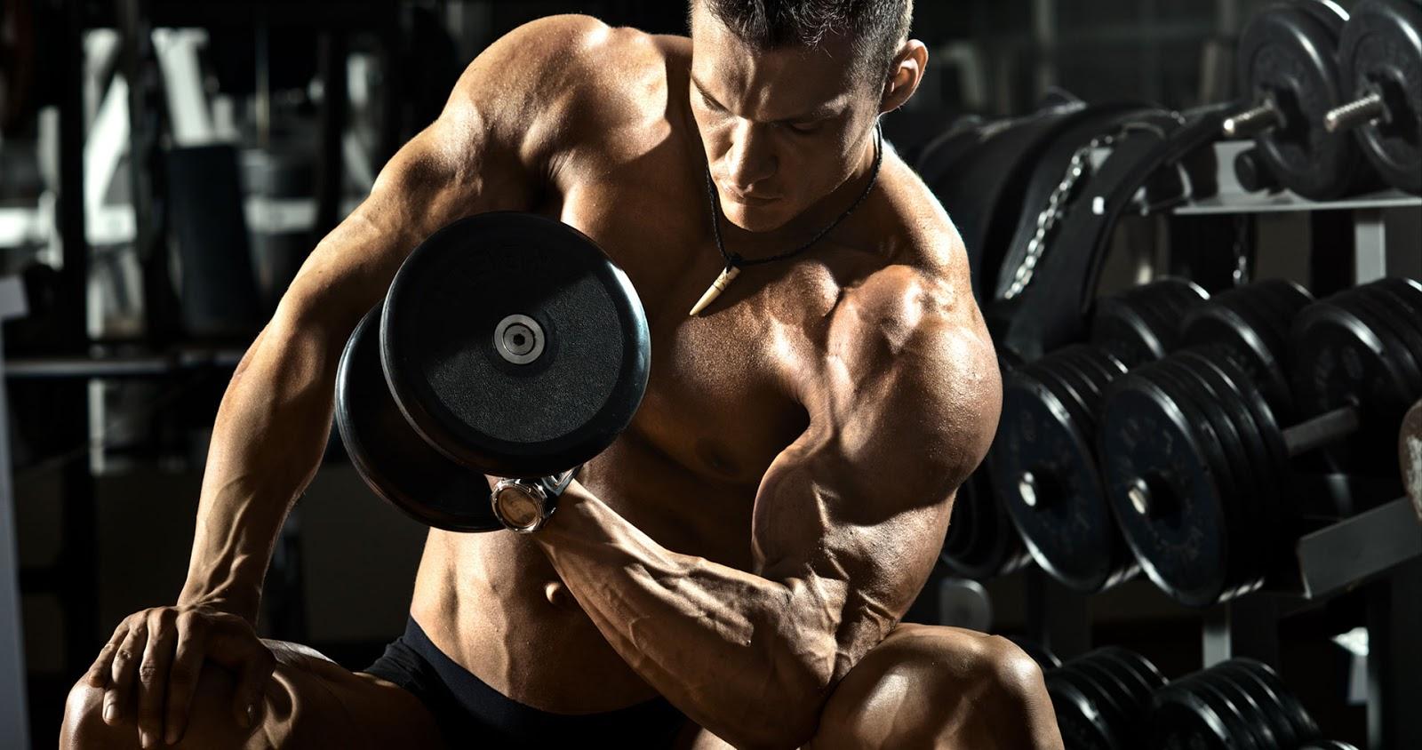 biceps-con-mancuerna-entrenamiento