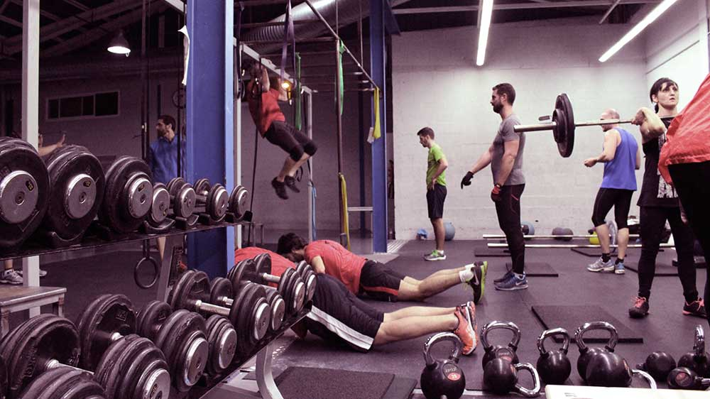 cross-training-modalidad