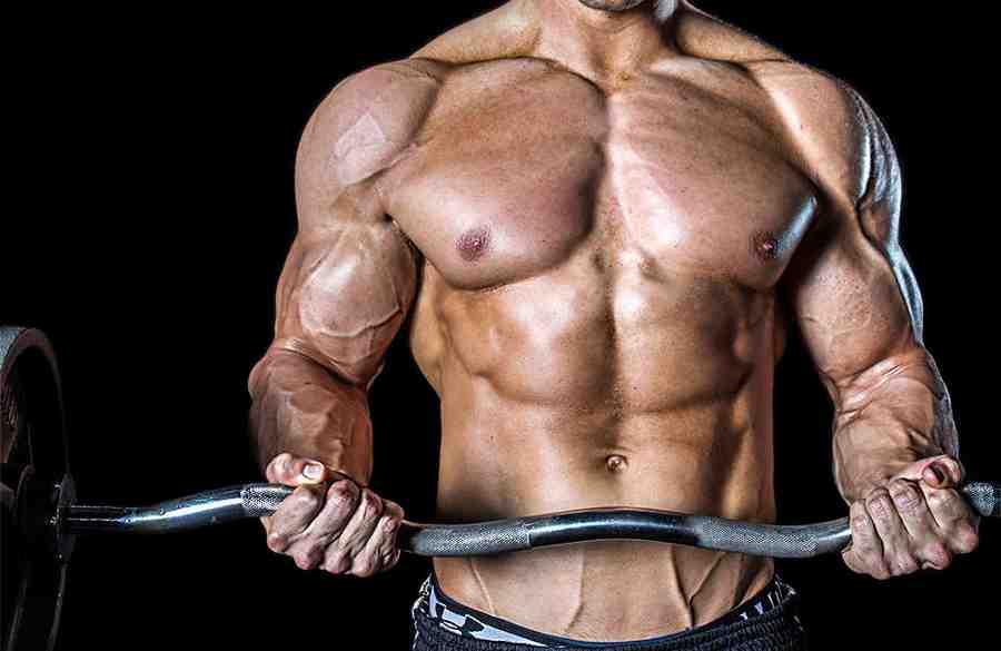 la-memoria-muscular