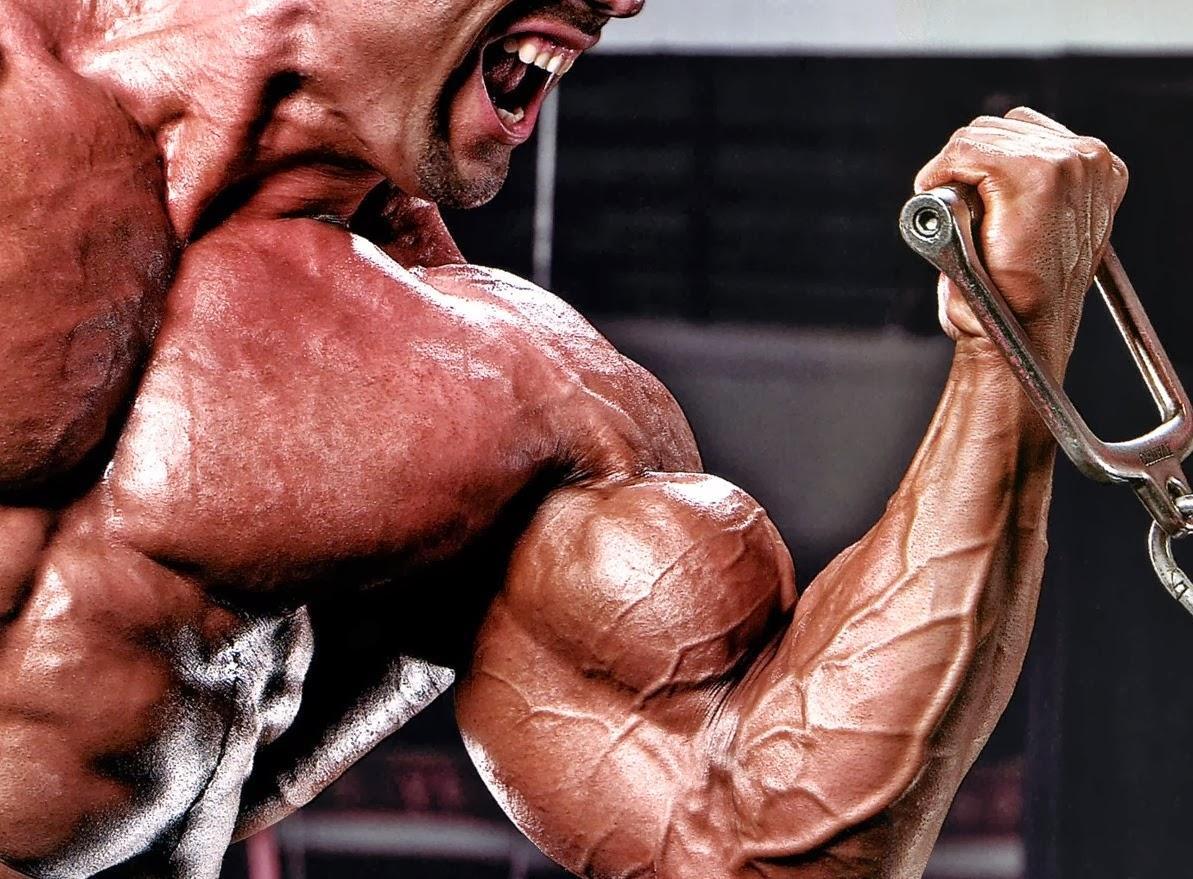 ejercicios-de-biceps