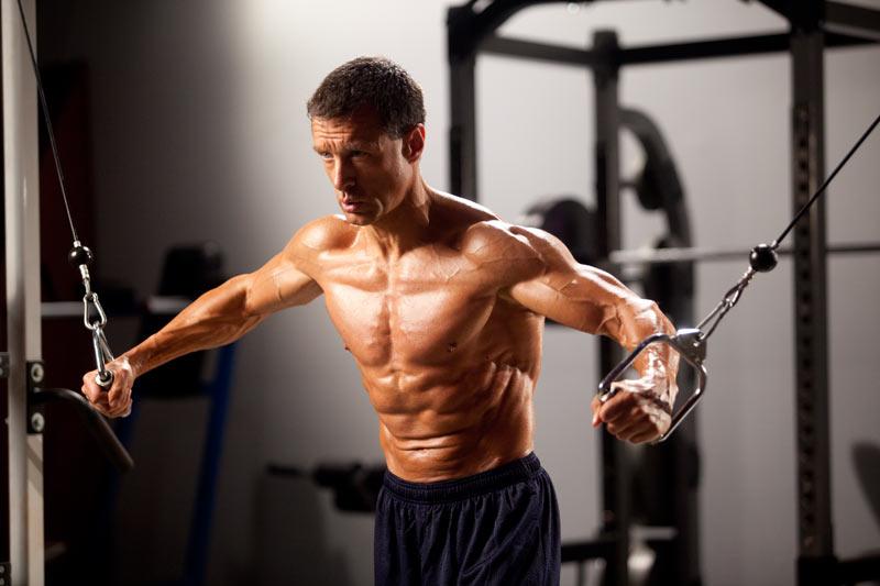 musculos-hipetrofia-fitness