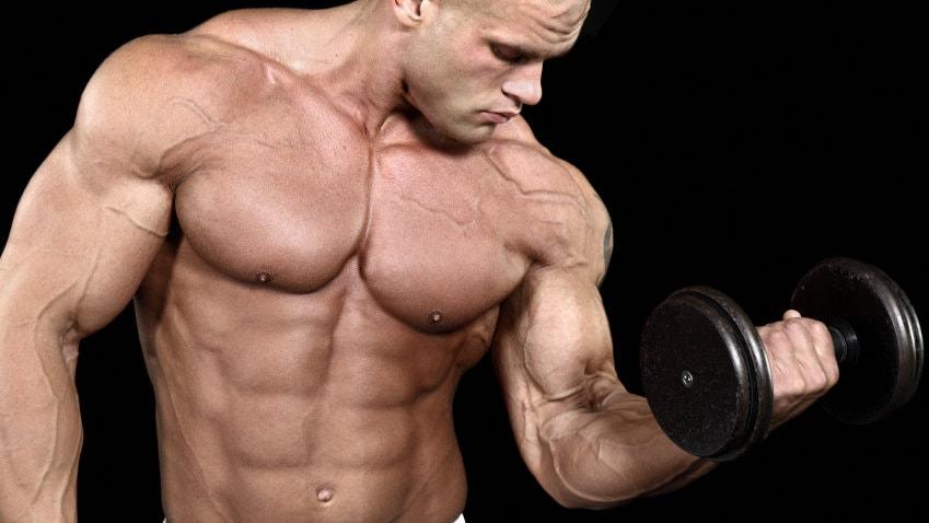 hipertrofia-muscular-cuerpo