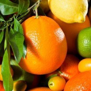 frutas, piel