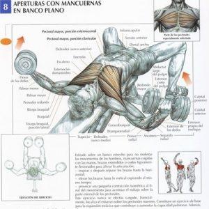 dumbbell_pectorales_ejercicio_rutina_hipertrofia