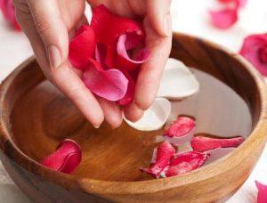 infusiones, rosas