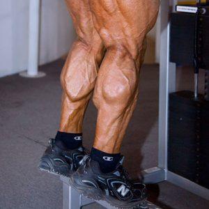 pantorrilas_ejercicio_entrenamiento_estética_simetria