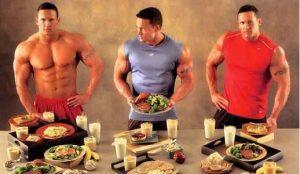 músculo, alimentación