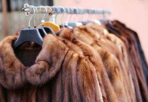 abrigo, limpiaza